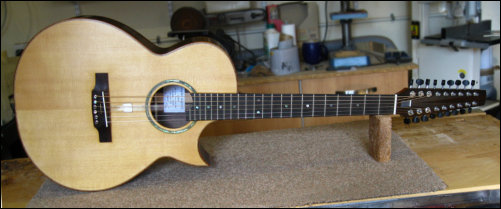 Sedgwick Sitar Guitar with Sympathetic Strings